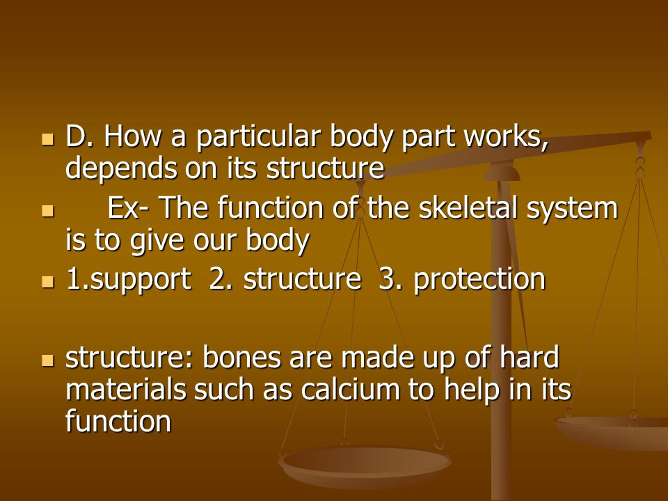 D.How a particular body part works, depends on its structure D.