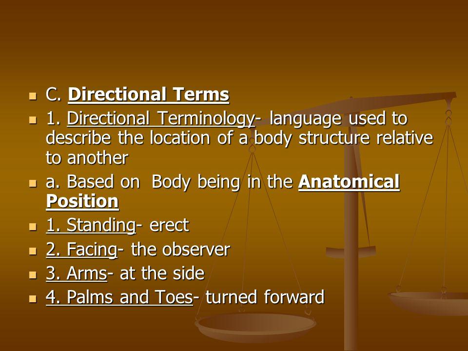 C.Directional Terms C. Directional Terms 1.