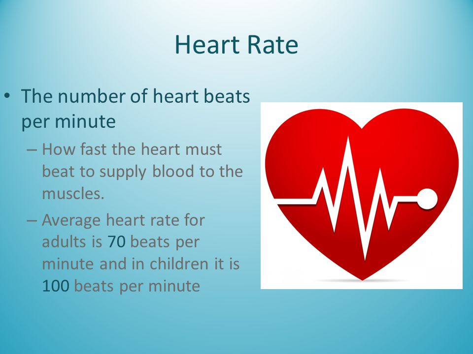 Heart Rate The number of heart beats per minute – How fast the heart must beat to supply blood to the muscles. – Average heart rate for adults is 70 b