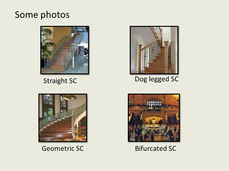 Straight SC Geometric SC Dog legged SC Bifurcated SC Some photos