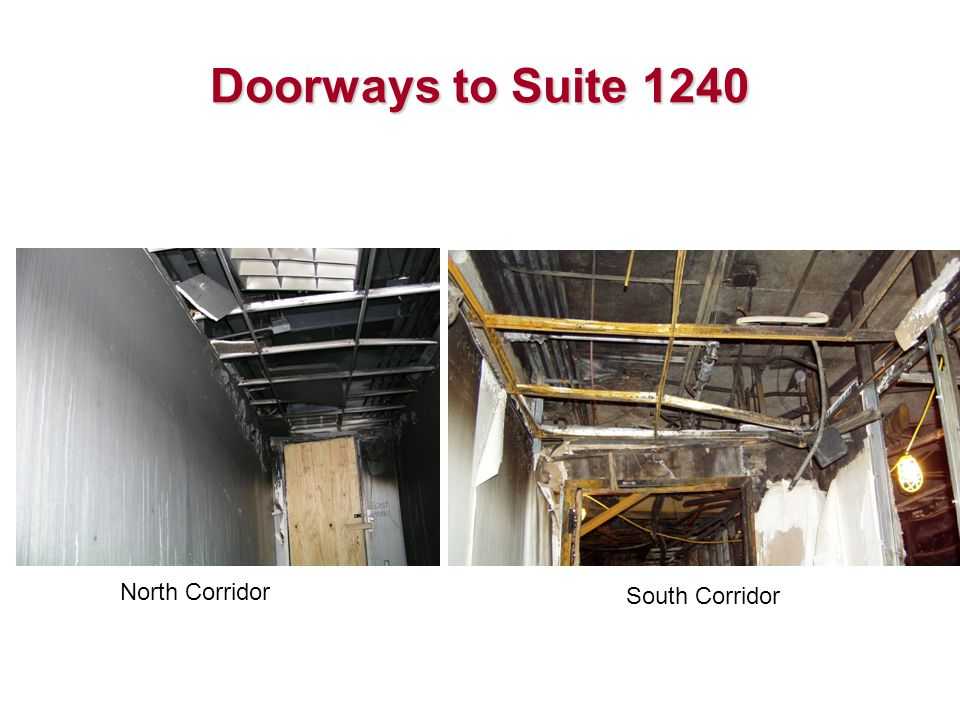 Doorways to Suite 1240 North Corridor South Corridor