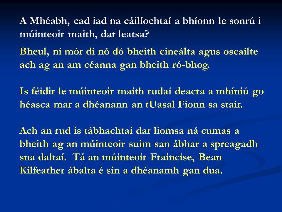 An dtaitníonn an scoil leat. Taitníonn an scoil go mór liom.