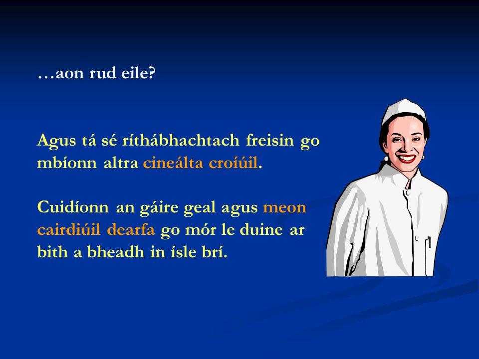 An dtaitníonn an scoil leat.Taitníonn an scoil go mór liom.