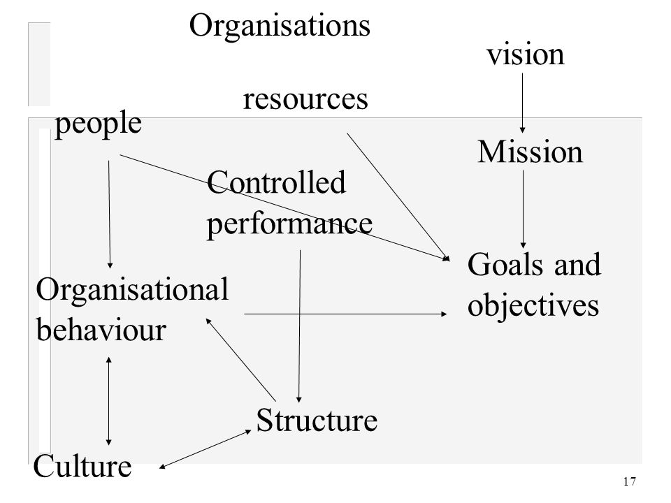 17 Organisations people resources Goals and objectives vision Mission Organisational behaviour Structure Controlled performance Culture