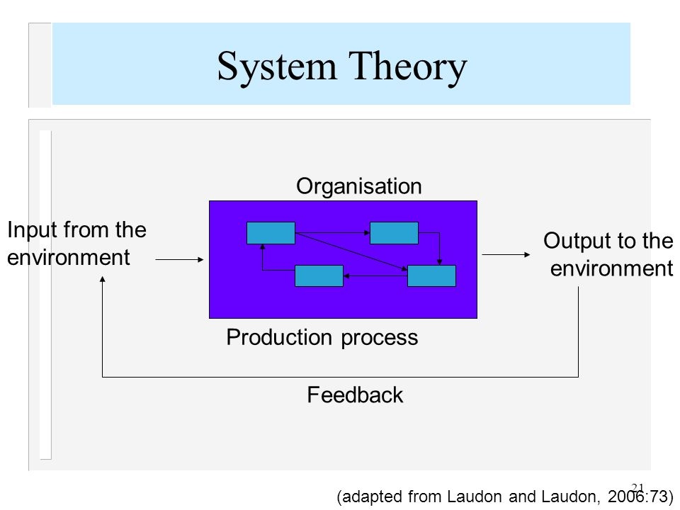 21 Organisation Production process Input from the environment Output to the environment Feedback (adapted from Laudon and Laudon, 2006:73) System Theo