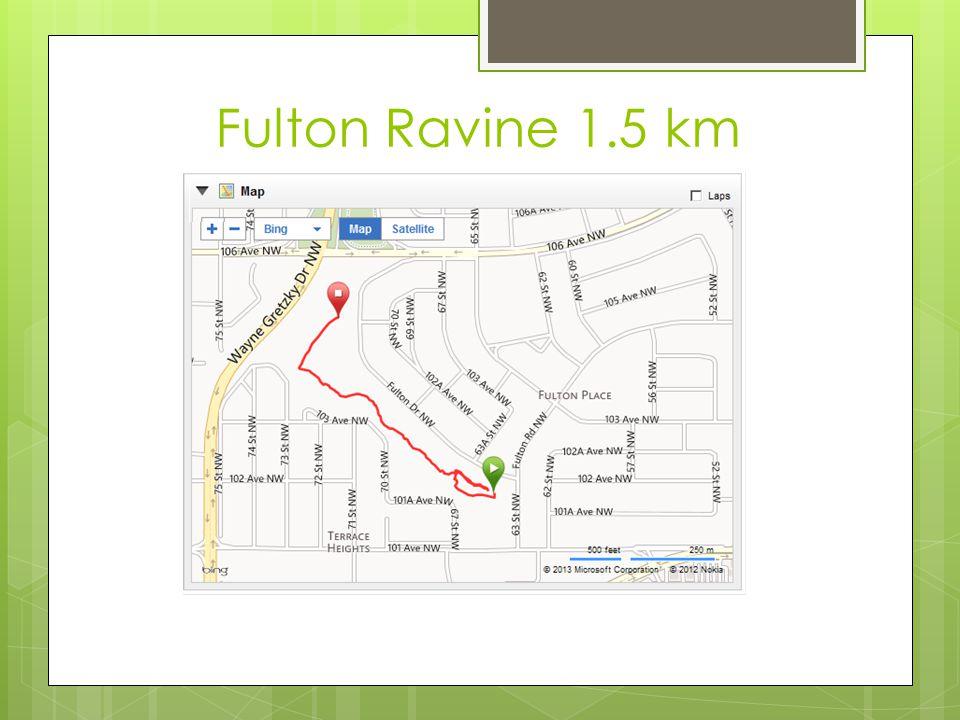 Fulton Ravine 1.5 km