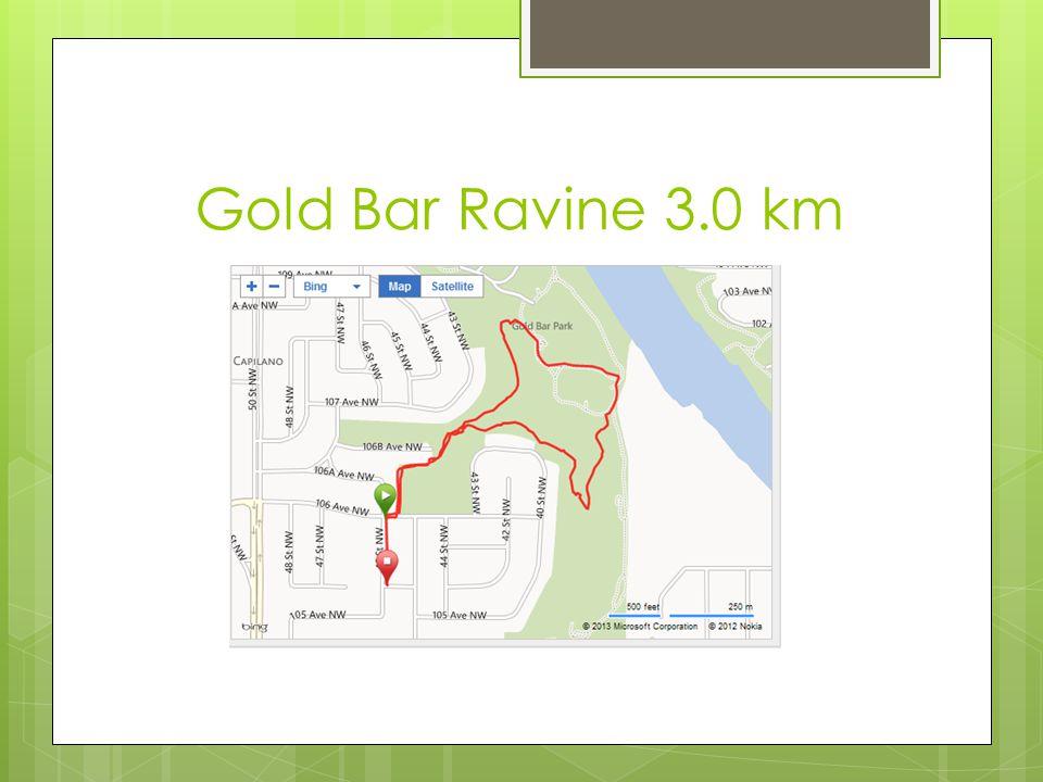Gold Bar Ravine 3.0 km