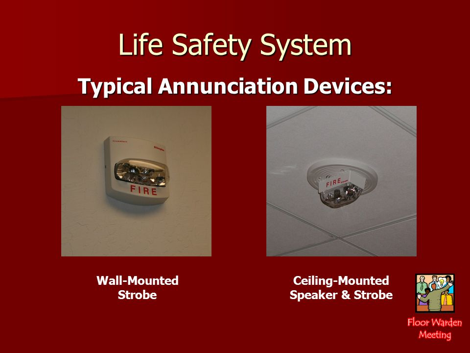Life Safety System Typical Annunciation Devices: Wall-Mounted Strobe Ceiling-Mounted Speaker & Strobe
