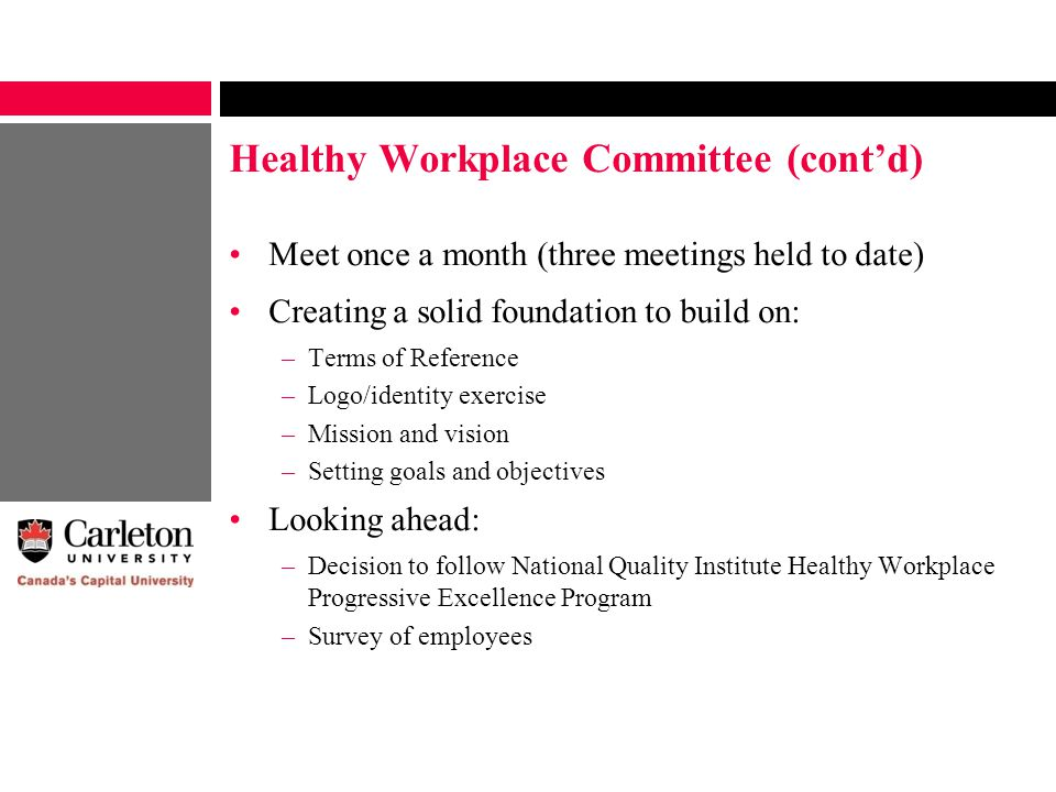 Healthy Workplace Committee (cont'd) Meet once a month (three meetings held to date) Creating a solid foundation to build on: –Terms of Reference –Log