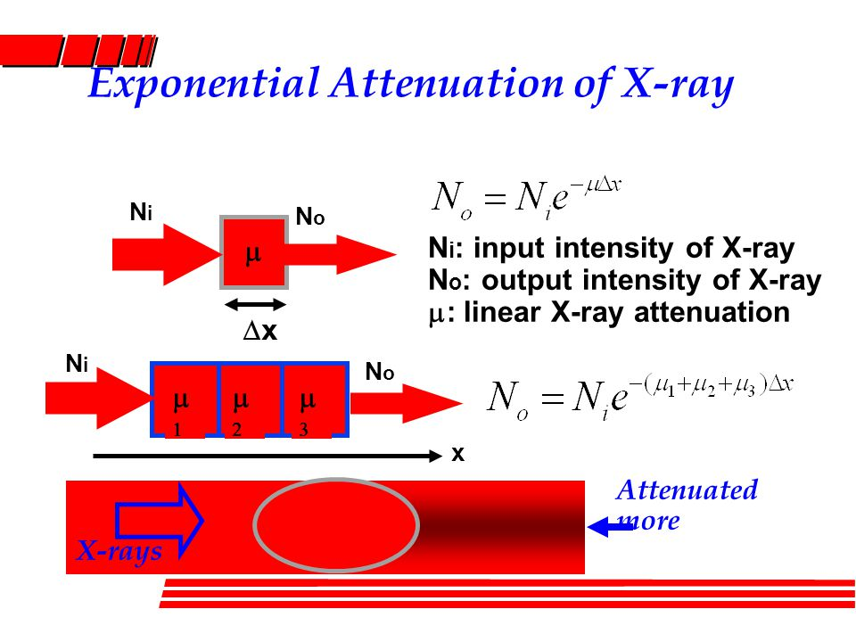 Exponential Attenuation of X-ray xx     NoNo NiNi x X-rays Attenuated more NoNo NiNi N i : input intensity of X-ray N o : output intensity of X-ray  : linear X-ray attenuation