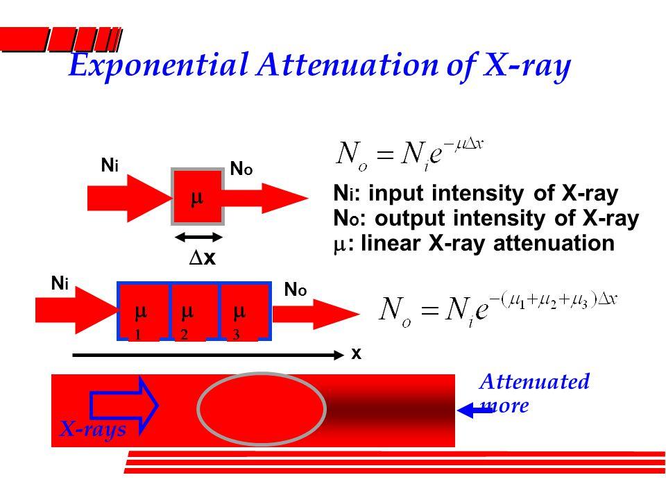 Ray-Sum of X-ray Attenuation xx NoNo NiNi  Ray-sum Line integral