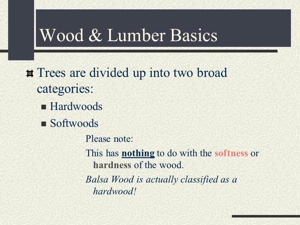 Trees are divided up into two broad categories: Hardwoods Softwoods Please note: This has nothing to do with the softness or hardness of the wood.