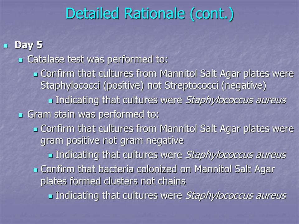 Detailed Rationale (cont.) Day 5 Day 5 Catalase test was performed to: Catalase test was performed to: Confirm that cultures from Mannitol Salt Agar plates were Staphylococci (positive) not Streptococci (negative) Confirm that cultures from Mannitol Salt Agar plates were Staphylococci (positive) not Streptococci (negative) Indicating that cultures were Staphylococcus aureus Indicating that cultures were Staphylococcus aureus Gram stain was performed to: Gram stain was performed to: Confirm that cultures from Mannitol Salt Agar plates were gram positive not gram negative Confirm that cultures from Mannitol Salt Agar plates were gram positive not gram negative Indicating that cultures were Staphylococcus aureus Indicating that cultures were Staphylococcus aureus Confirm that bacteria colonized on Mannitol Salt Agar plates formed clusters not chains Confirm that bacteria colonized on Mannitol Salt Agar plates formed clusters not chains Indicating that cultures were Staphylococcus aureus Indicating that cultures were Staphylococcus aureus