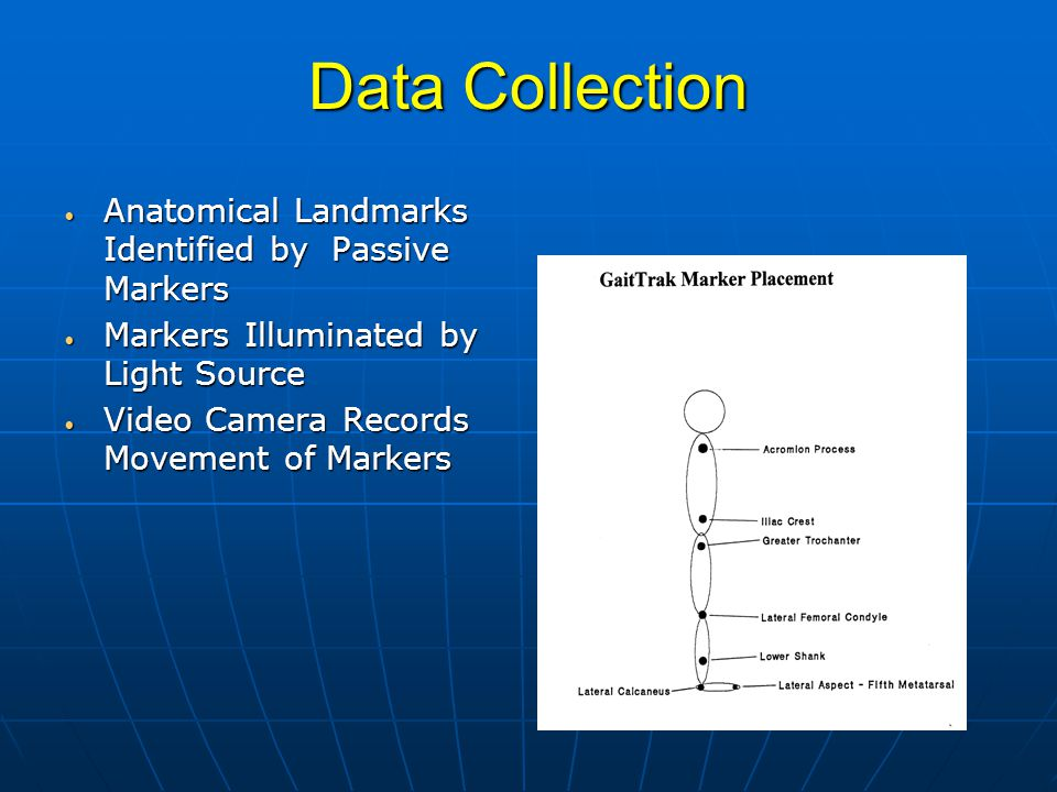Data Collection Anatomical Landmarks Identified by Passive Markers Anatomical Landmarks Identified by Passive Markers Markers Illuminated by Light Source Markers Illuminated by Light Source Video Camera Records Movement of Markers Video Camera Records Movement of Markers