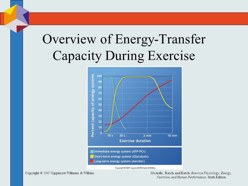 Copyright © 2007 Lippincott Williams & Wilkins.McArdle, Katch, and Katch: Exercise Physiology: Energy, Nutrition, and Human Performance, Sixth Edition Predictions from Nonexercise Data Regression equations are then used to calculate scores.