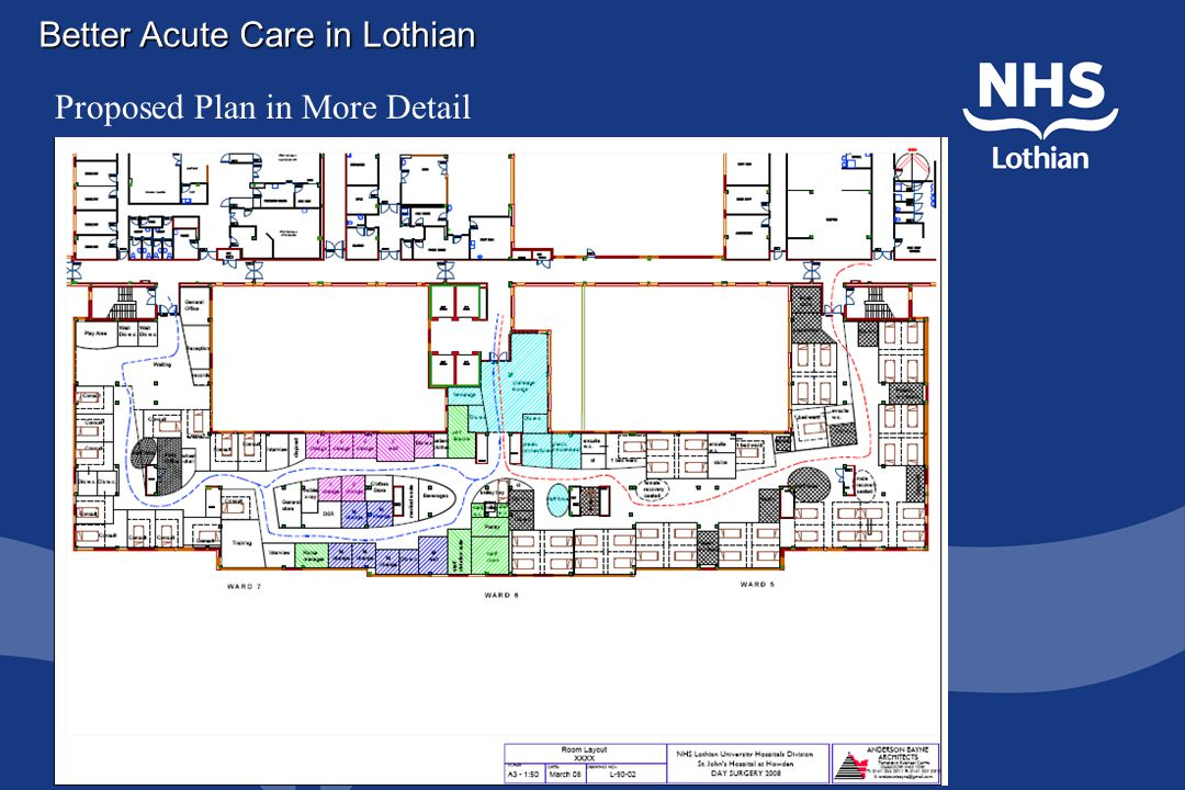 Better Acute Care in Lothian Proposed Plan in More Detail
