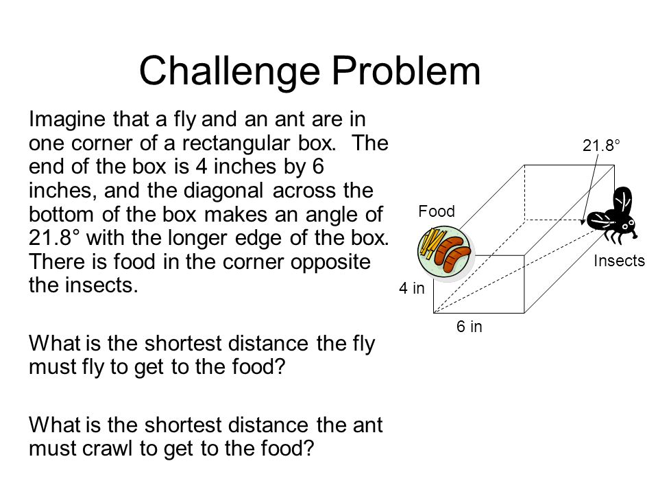 Challenge Problem Imagine that a fly and an ant are in one corner of a rectangular box.