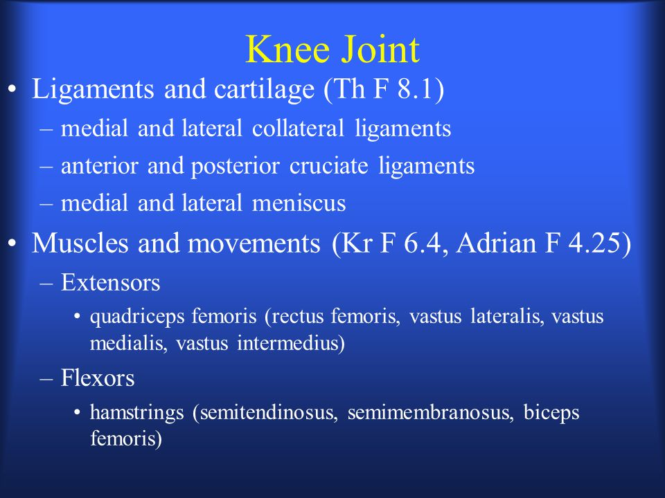 Knee Joint Ligaments and cartilage (Th F 8.1) –medial and lateral collateral ligaments –anterior and posterior cruciate ligaments –medial and lateral meniscus Muscles and movements (Kr F 6.4, Adrian F 4.25) –Extensors quadriceps femoris (rectus femoris, vastus lateralis, vastus medialis, vastus intermedius) –Flexors hamstrings (semitendinosus, semimembranosus, biceps femoris)