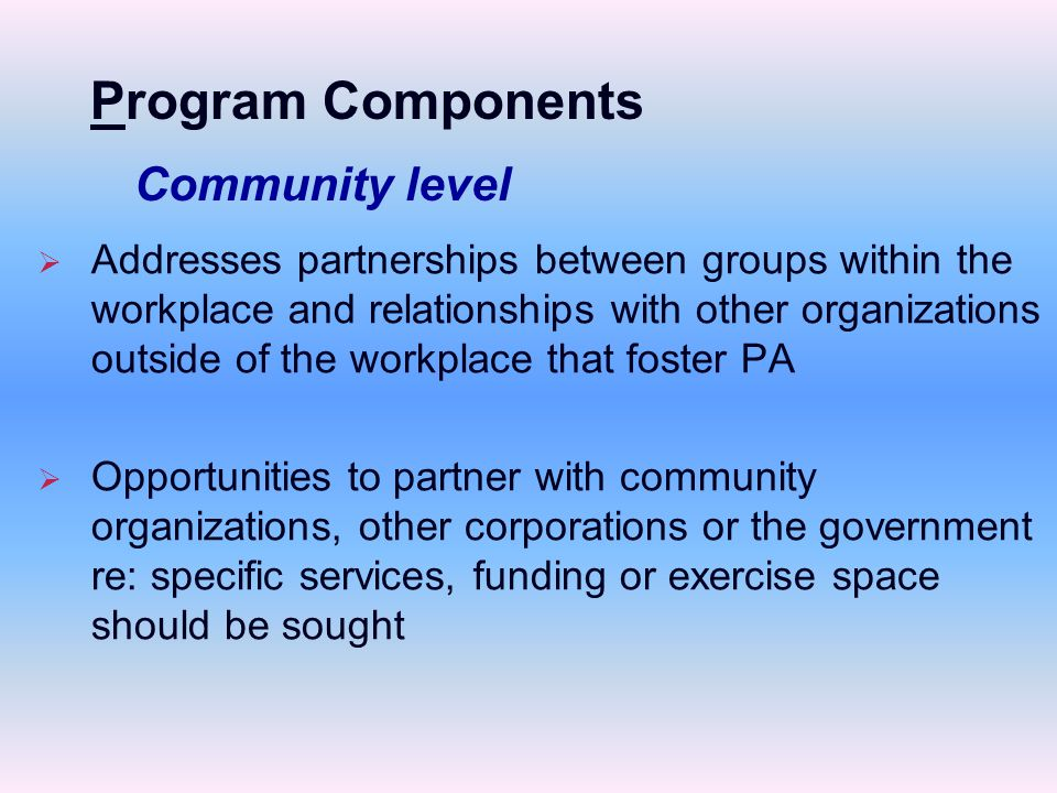   Addresses partnerships between groups within the workplace and relationships with other organizations outside of the workplace that foster PA   Opportunities to partner with community organizations, other corporations or the government re: specific services, funding or exercise space should be sought Community level Program Components