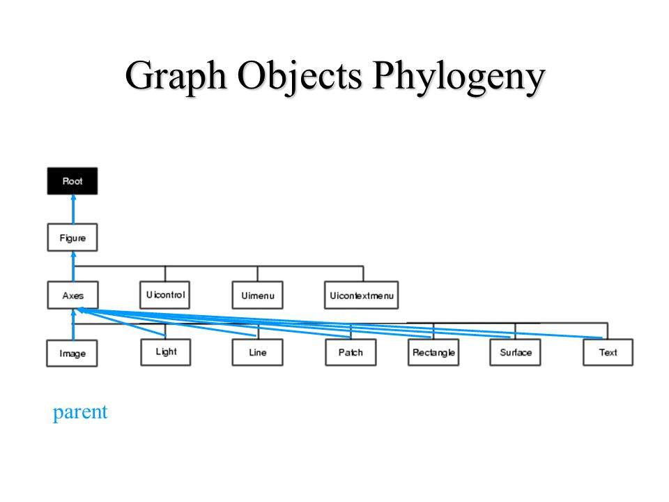Graph Objects Phylogeny parent