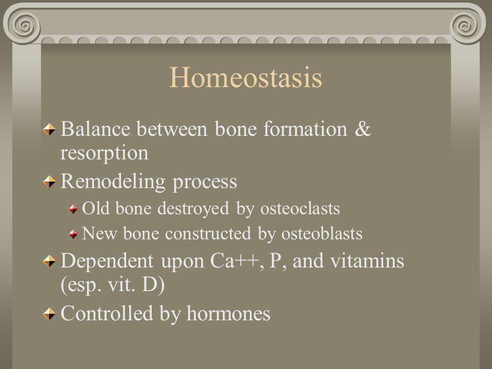 Risk of Fracture Caucasian Women Vertebral 15.6% Hip 17.5% Wrist 16% Overall 39.7% Caucasian Men Vertebral 5% Hip 6% Wrist 2.5% Overall 13.1%
