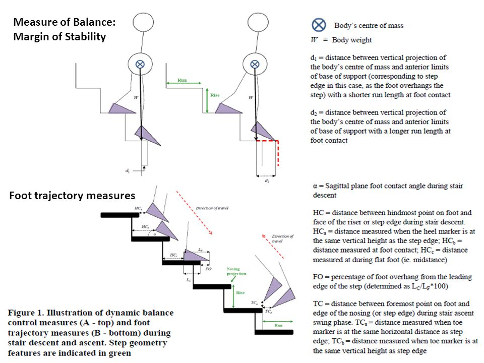 Outline Measure of Balance: Margin of Stability Foot trajectory measures