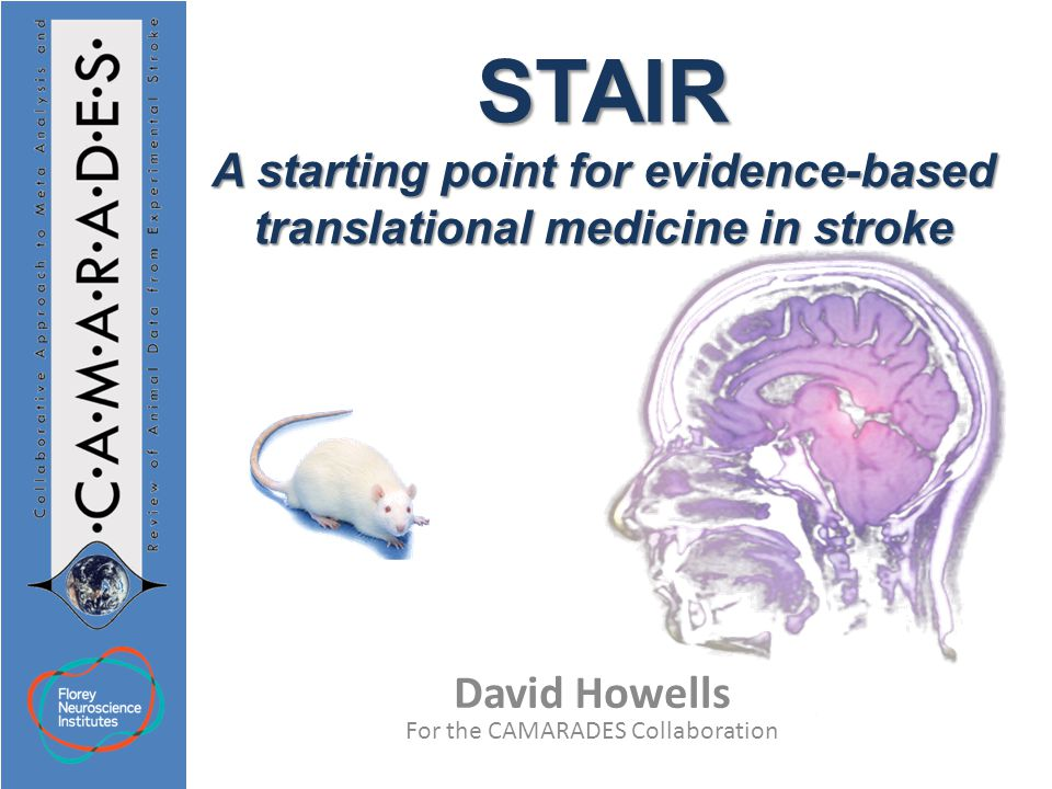 David Howells For the CAMARADES Collaboration STAIR A starting point for evidence-based translational medicine in stroke