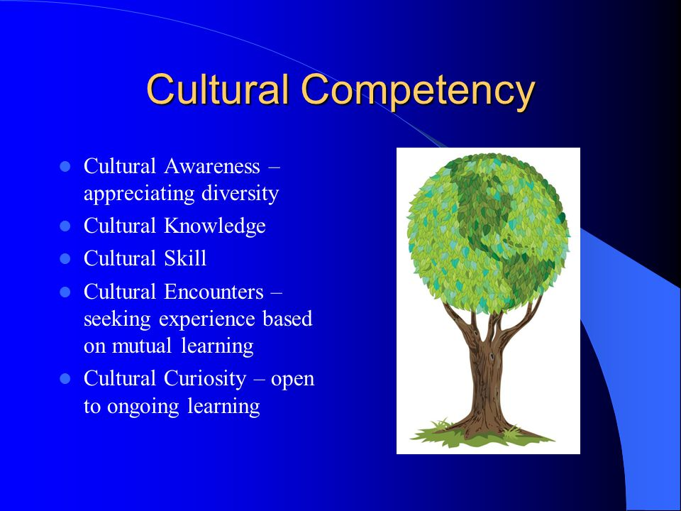Cultural Competency Cultural Awareness – appreciating diversity Cultural Knowledge Cultural Skill Cultural Encounters – seeking experience based on mutual learning Cultural Curiosity – open to ongoing learning