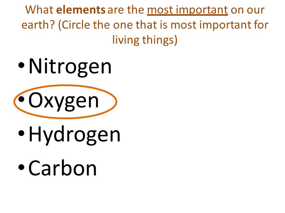 What elements are the most important on our earth.