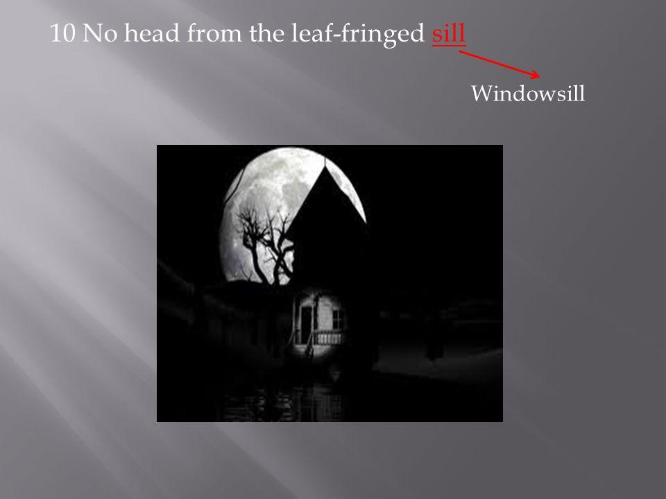 10 No head from the leaf-fringed sill Windowsill