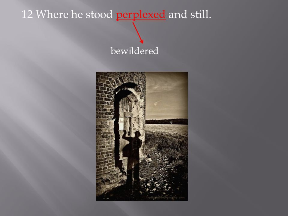 12 Where he stood perplexed and still. bewildered