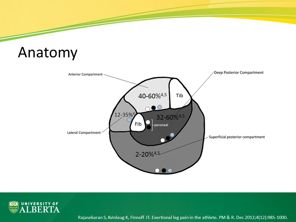 Introduction Anatomy and Pathophysiology History and Physical Exam Diagnostic Evaluation Treatment Return-to-Play Guidelines Outline Have an approach to adding CECS to your differential diagnosis based on history and physical examination Outline an approach to ordering the appropriate tests for patients where CECS is on the differential diagnosis Outline conservative and surgical treatment options for CECS Outline return to play guidelines for CECS Objectives Choric Exertional Compartment Syndrome (CECS)