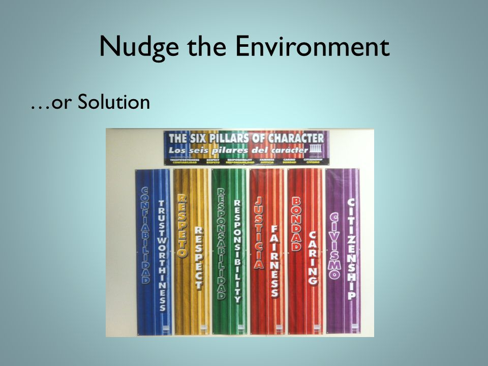 Nudge the Environment …or Solution