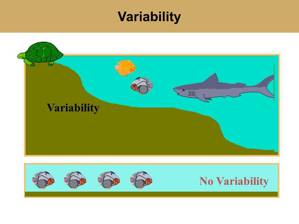 Variability No Variability Variability