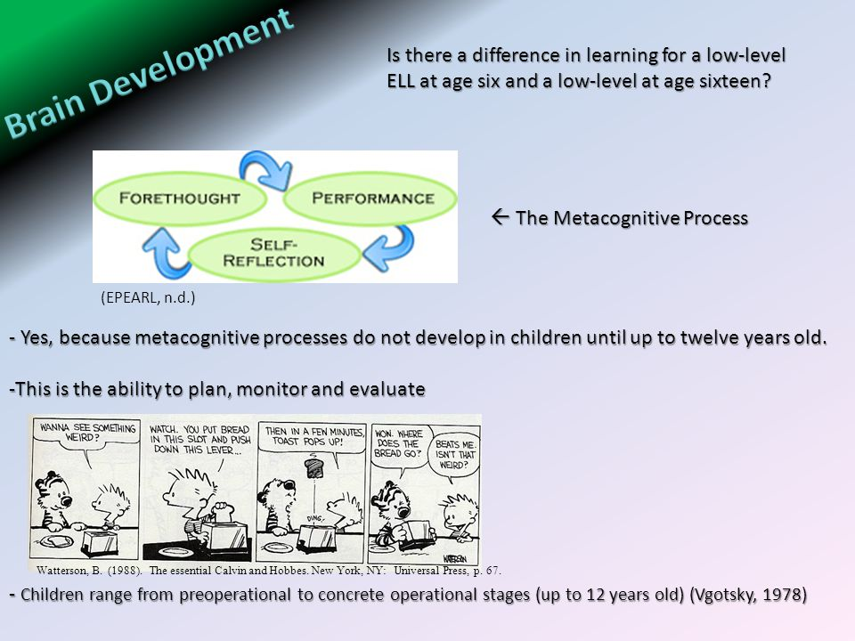 - Yes, because metacognitive processes do not develop in children until up to twelve years old.