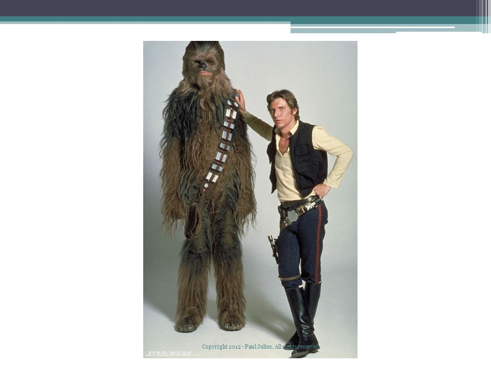 Chewbacca Copyright 2012 - Paul Julius, All rights reserved