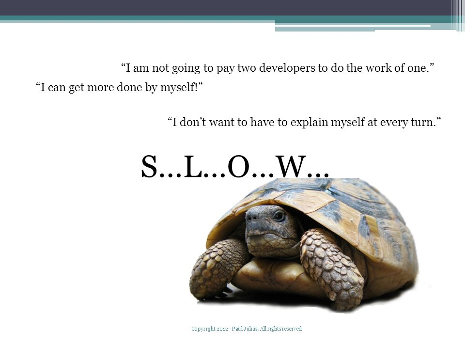 S…L…O…W… I can get more done by myself! I don't want to have to explain myself at every turn. I am not going to pay two developers to do the work of one. Copyright 2012 - Paul Julius, All rights reserved