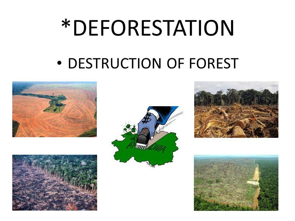 *DEFORESTATION DESTRUCTION OF FOREST