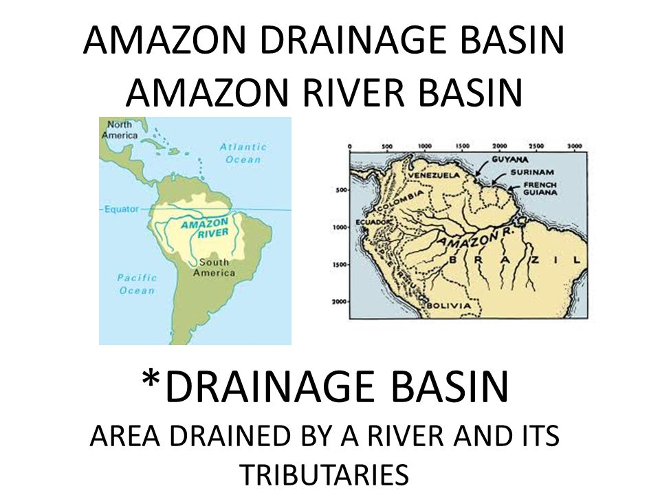 AMAZON DRAINAGE BASIN AMAZON RIVER BASIN *DRAINAGE BASIN AREA DRAINED BY A RIVER AND ITS TRIBUTARIES