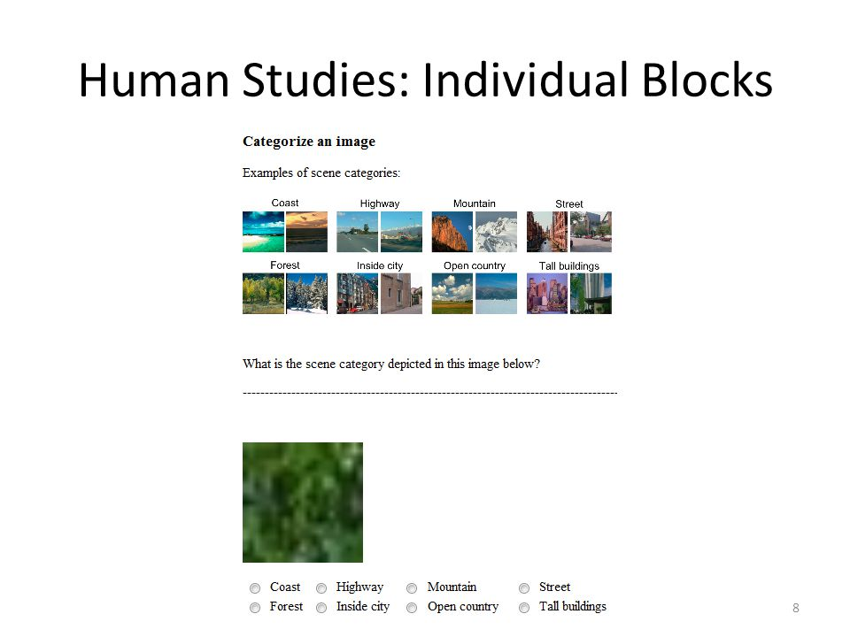 Human Studies: Individual Blocks 8