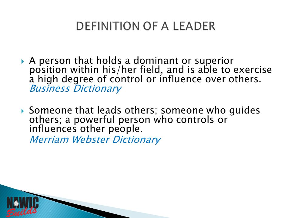  A person that holds a dominant or superior position within his/her field, and is able to exercise a high degree of control or influence over others.