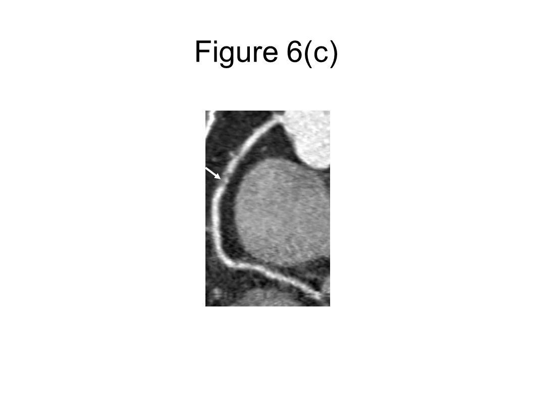 Figure 6(c)