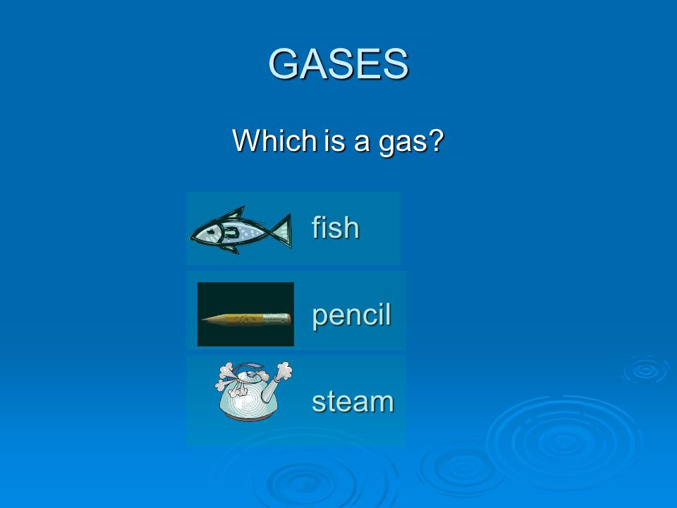 GASES Which is a gas fishpencilsteam