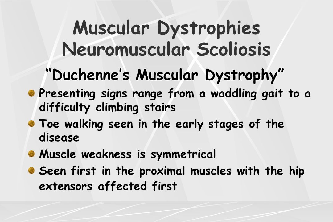 "Muscular Dystrophies Neuromuscular Scoliosis ""Duchenne's Muscular Dystrophy"" Presenting signs range from a waddling gait to a difficulty climbing stai"