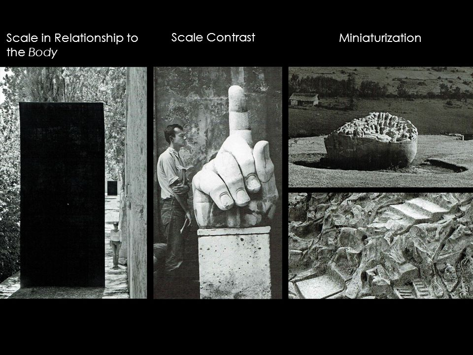 Scale in Relationship to the Body Scale Contrast Miniaturization