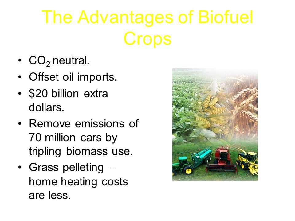 The Advantages of Biofuel Crops CO 2 neutral. Offset oil imports.