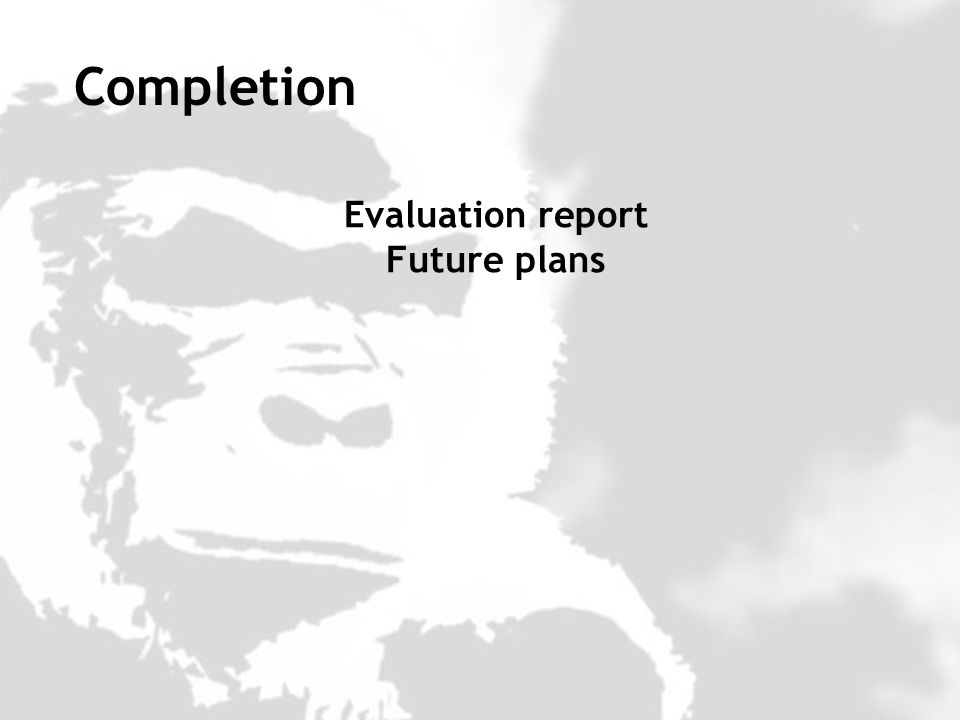 Evaluation report Future plans Completion