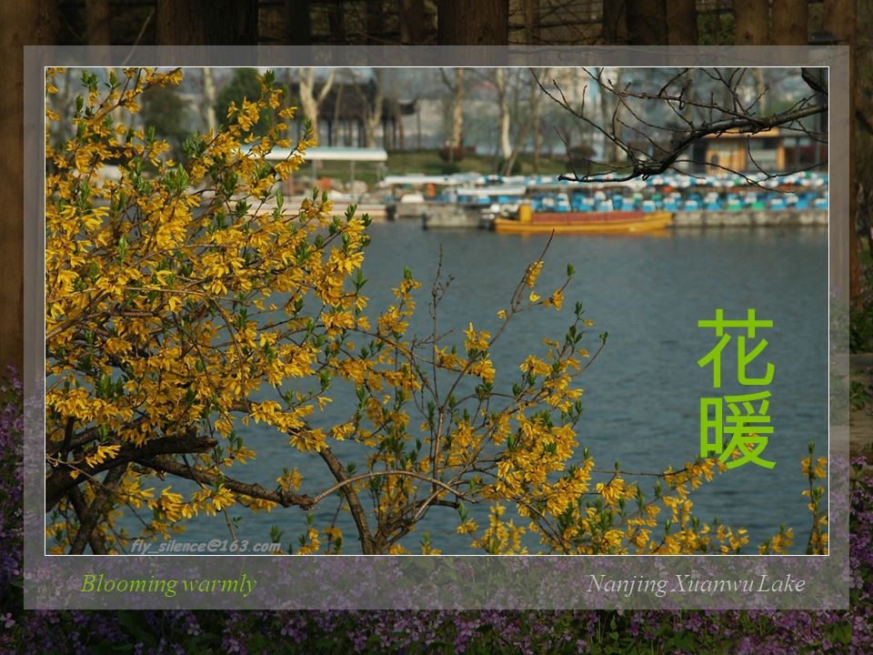 In the sunshine of the ancient city wallNanjing Xuanwu Lake