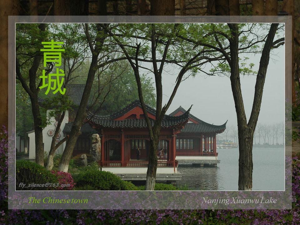 Nanjing University of Sci. & Tech. The flower words