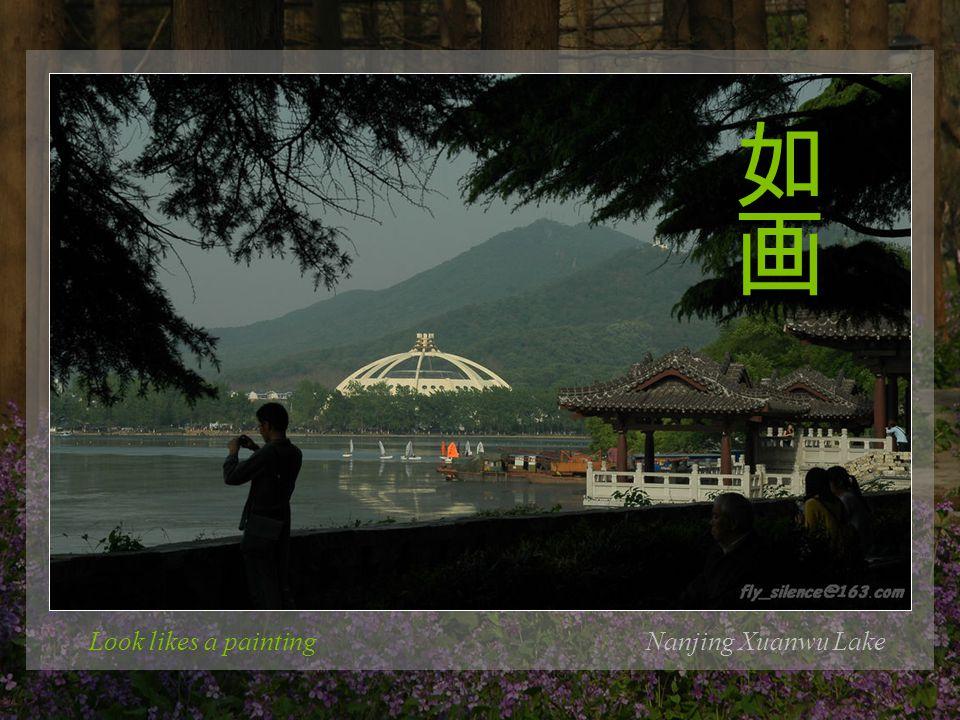 The Chinese townNanjing Xuanwu Lake